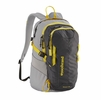 Patagonia Refugio Pack 28L Forge Grey w/ Chromatic Yellow