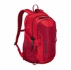 Patagonia Refugio Pack 28L French Red