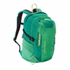 Patagonia Refugio Pack 28L Nettle Green
