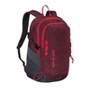 Patagonia Refugio Pack 28L Oxblood Red