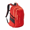 Patagonia Refugio Pack 28L Turkish Red