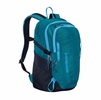 Patagonia Refugio Pack 28L Underwater Blue