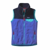 Patagonia Womens Snap-T Fleece Vest Violet Blue