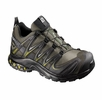 Salomon Mens XA Pro 3D GTX USA Iguana Green/ Black
