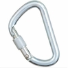 Stubai Steel Modified D Screwgate Carabiner
