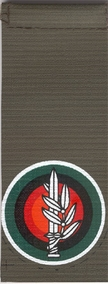 IDF Combined Forces Tag