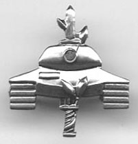 IDF Israel Army Officer Insignia