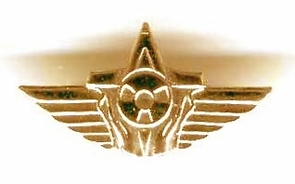 Israel Air Force IDF Pin