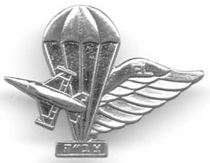 Israel Air Force IDF Rigger Pin