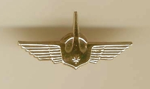Israel Air Force IDF Special Pin
