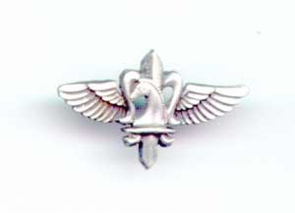 Israel Army HQ Special Force Pin
