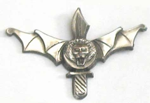 Israel Army IDF  Engineering Pin