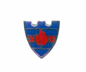 Israel Army IDF MP Pin
