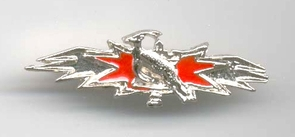 Israel Army IDF  Yayel Unit Badge