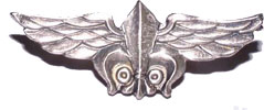 Israel Army Intelligence Officer Pin