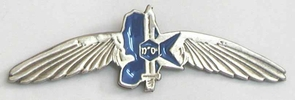Israel Army Military Police Insignia