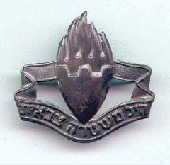 Israel Military Police Insignia