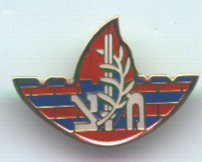 Israel Military Police Pin