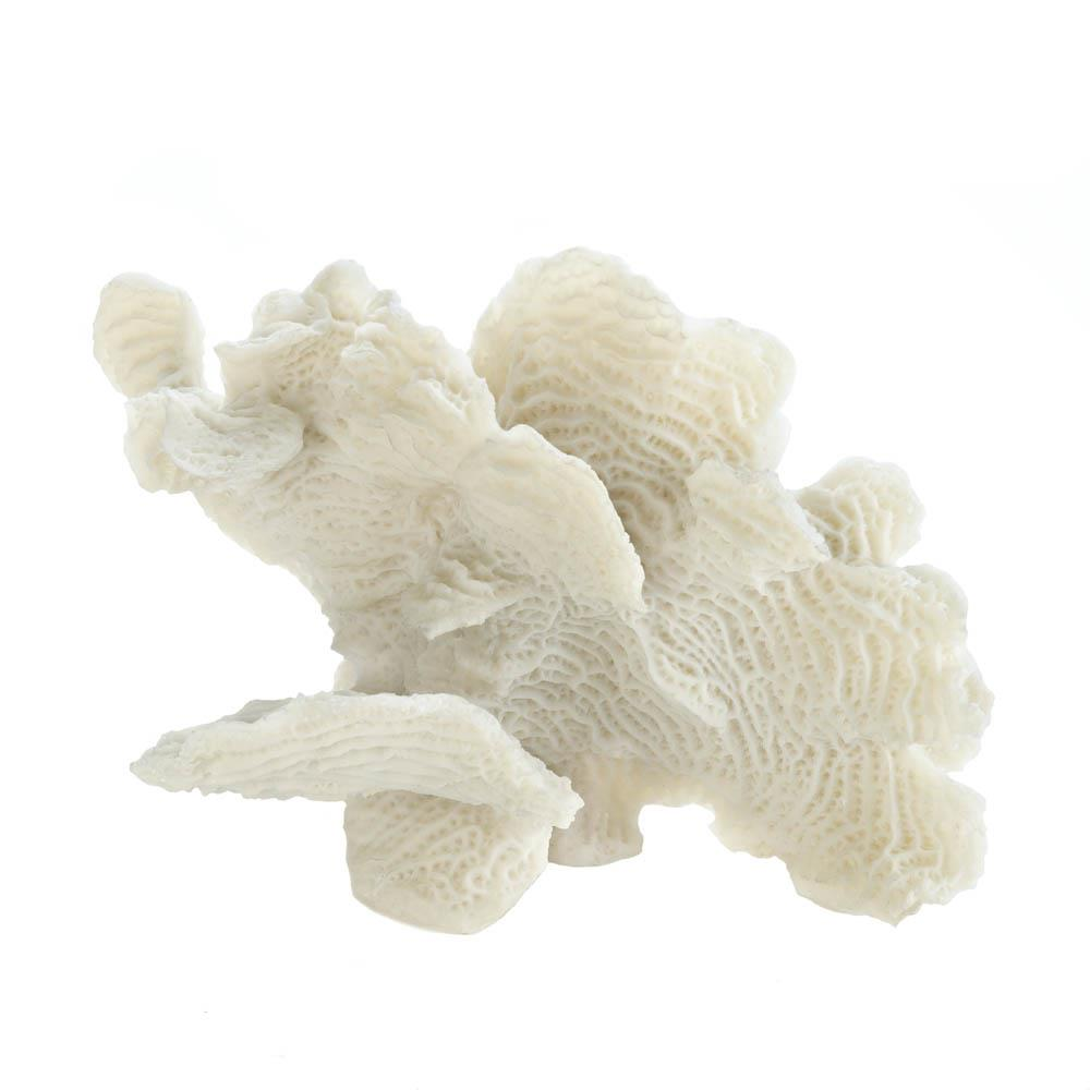 Large White Coral Tabletop Decor Wholesale At Koehler Home