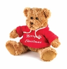 Noel The Christmas Teddy Bear
