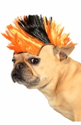 Black and Orange Pet Mohawk Wig