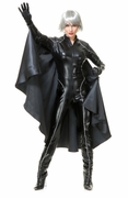 Thunder Storm Superhero Adult Costume