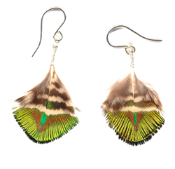 Peacock Glow Earrings