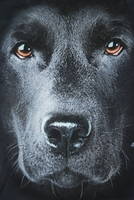 THE MOUNTAIN T-SHIRT BLACK LAB FACE TEE