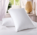 King size  500 Thread count Firm filled Goose down Pillow (each)