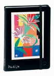 Quo Vadis Artist Collections - Matisse Journal, Creole Dancer - Large