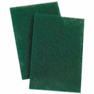 Set of 10 Scouring Pads
