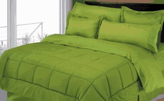 Stripe Comforter/Bed in a Bag Set (Sage Green)