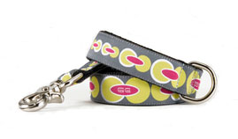 Fillmore Leash