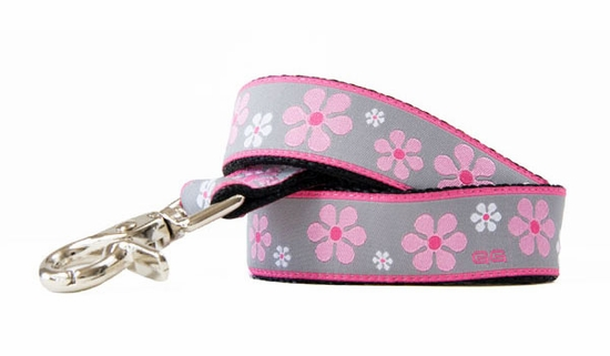 Valencia Pink Leash