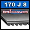"170J8 Poly-V Belt, 17"" (432mm) Length. 8 Ribs 3/4"" Wide. Metric: 8-PJ432"
