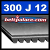 300J12 Poly-V Belt (Micro-V): Metric 12-PJ762 Motor Belt.