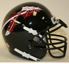 Florida State Seminoles 2007 Black Schutt Throwback Mini Helmet