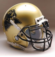 Pittsburgh Panthers 1997-2004 Schutt Throwback Mini Helmet