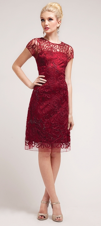 Short Lace Cocktail Dresses With Sleeves - Holiday Dresses