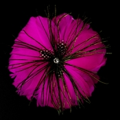 * Fuchsia Feather Brooch 132