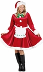 Women's Plus Size Mrs. Santa Claus Costume