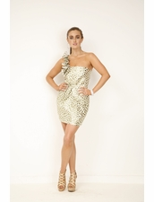 Aryn K Goldie Hawk Dress