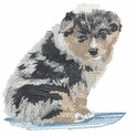 aussie027 Australian Shepherd (small or large design)