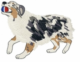 aussie031 Australian Shepherd (small or large design)