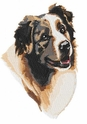 aussie039 Australian Shepherd (small or large design)