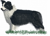 bordercollie003 Border Colllie (small or large design)