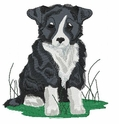 bordercollie006 Border Colllie (small or large design)