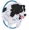 bordercollie012 Border Colllie (small or large design)