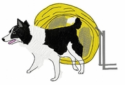 bordercollie017 Border Collie (small or large design)