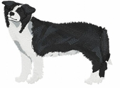 bordercollie032 Border Collie (small or large design)